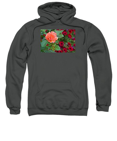 2015 Fall Equinox At The Garden Sunset Rose And Petunias Sweatshirt