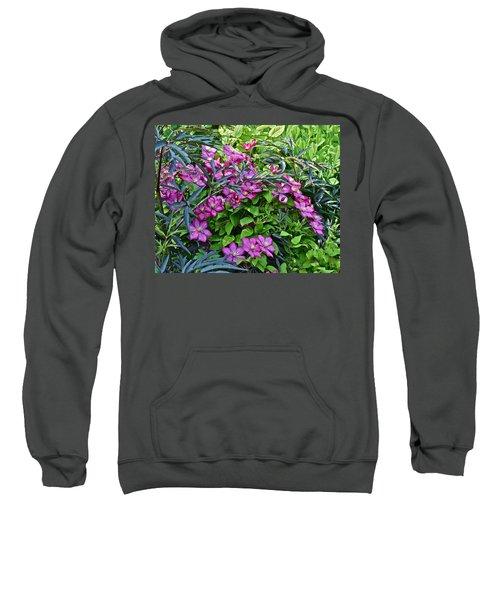2015 Summer At The Garden Beautiful Clematis Sweatshirt