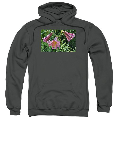 2015 Summer At The Garden Lilies In The Rose Garden 2 Sweatshirt