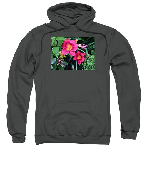 2015 Summer At The Garden Strawberry Candy Daylily 2 Sweatshirt