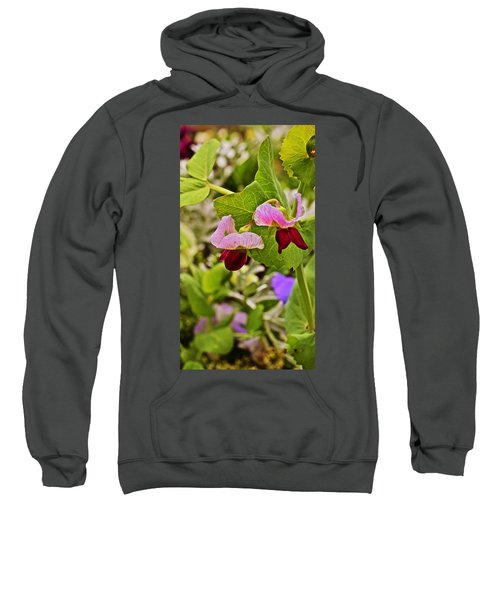 2015 Summer's Eve At The Garden Sweet Pea 2 Sweatshirt