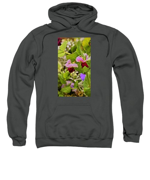 2015 Summer's Eve At The Garden Sweet Pea 2 Sweatshirt