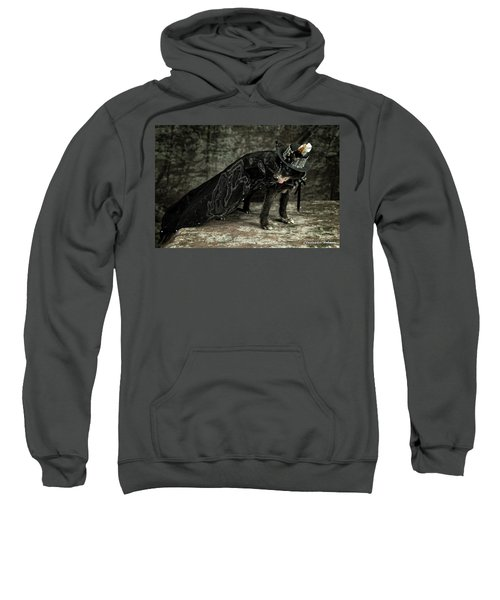 20170804_ceh1124 Sweatshirt