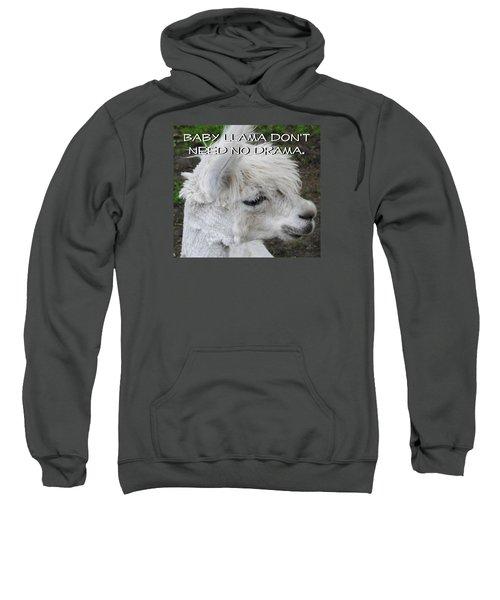 Baby Llama Sweatshirt by Ellen Henneke