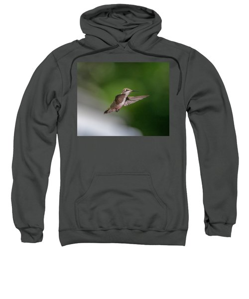 Female Ruby Throated Hummingbird Sweatshirt