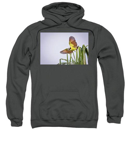 Great Crested Flycatcher Sweatshirt