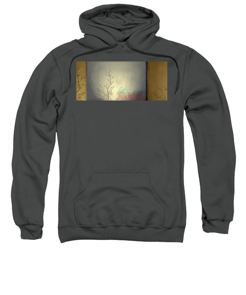 3 Sweatshirt