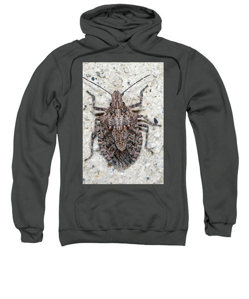 Sweatshirt featuring the photograph Stink Bug by Breck Bartholomew