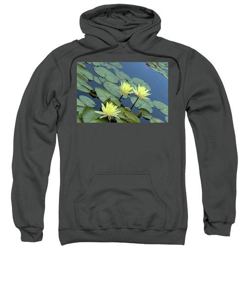 3 Yellow Sweatshirt