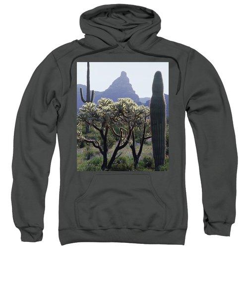 313737 Montezumas Head Sweatshirt