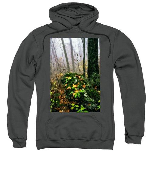 Autumn Monongahela National Forest Sweatshirt