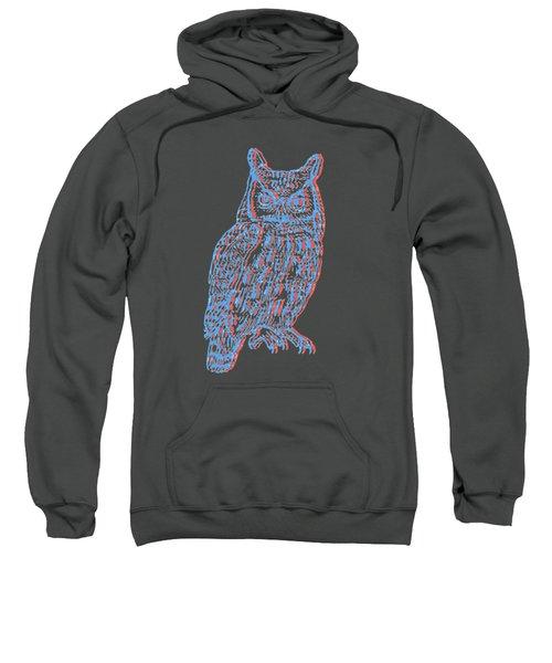 3d Owl Sweatshirt