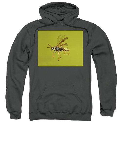 European Paper Wasp Sweatshirt