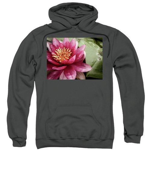 Lotus Sweatshirt