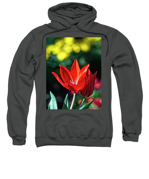 Spring Garden Sweatshirt