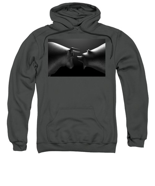 Bull Versus Bear Sweatshirt