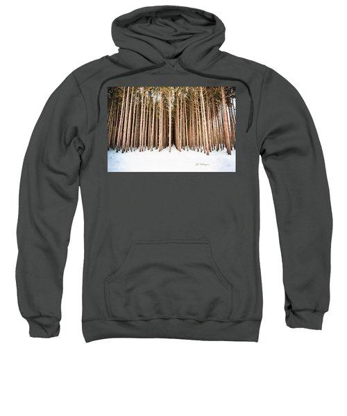 Michigan Winter Sweatshirt