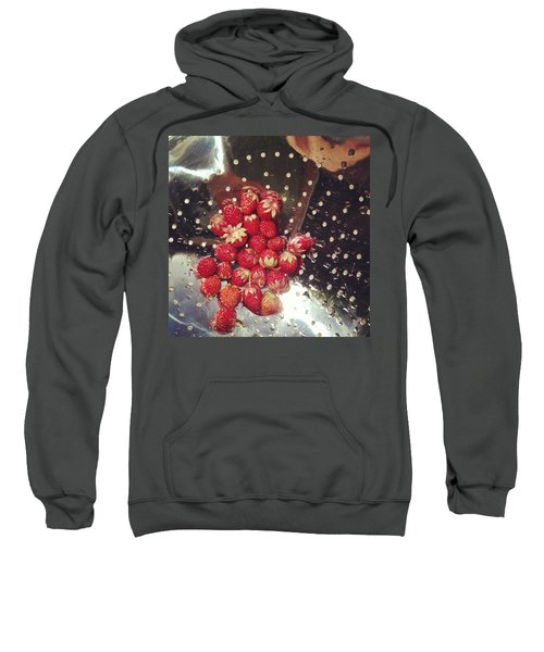 Wild Strawberries Sweatshirt
