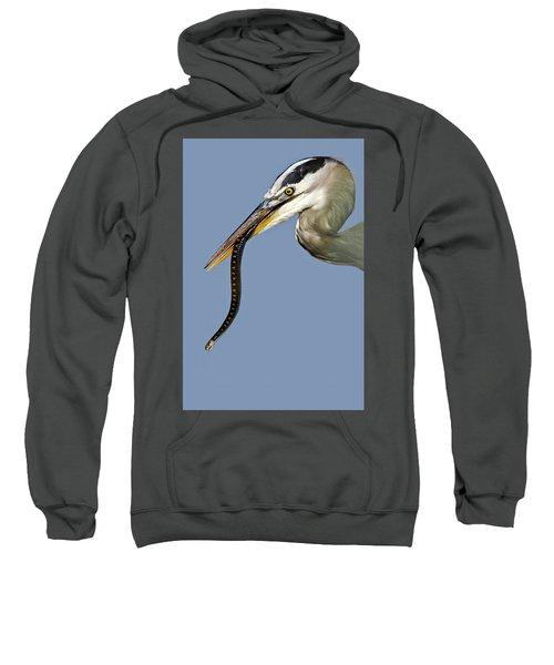 A Bad Snake Day Sweatshirt