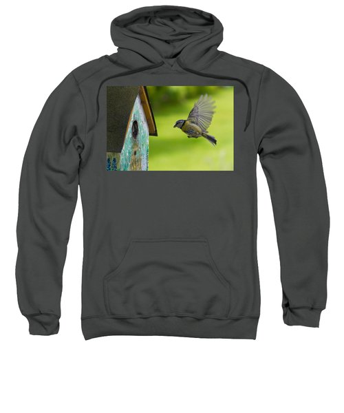 A Busy Blue Tit Mum Sweatshirt