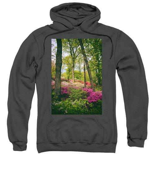 A Colorful Hillside Sweatshirt