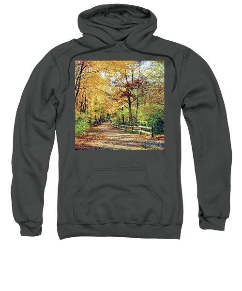 A Colorful Walk Sweatshirt