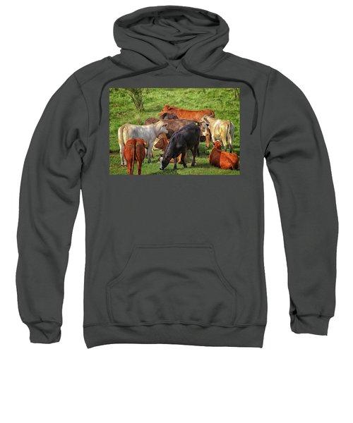 A Cows Backside Sweatshirt