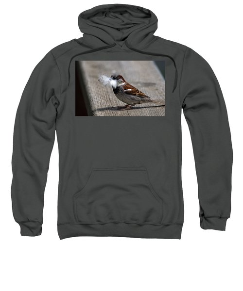 A Feather For The Nest Sweatshirt