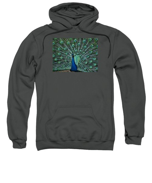 A Glory To The Eyes Sweatshirt