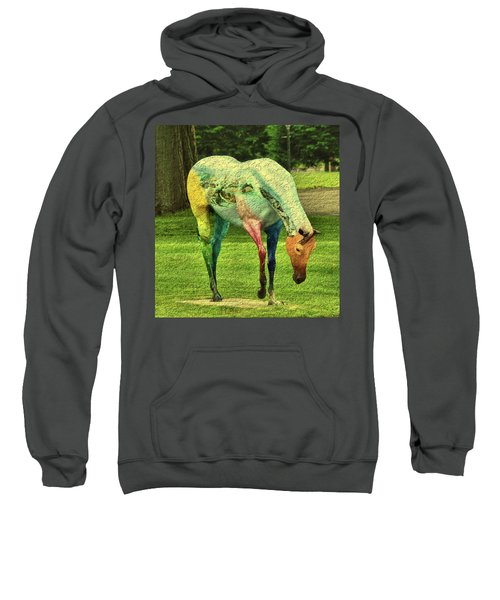 A Horse Is A Horse Sweatshirt