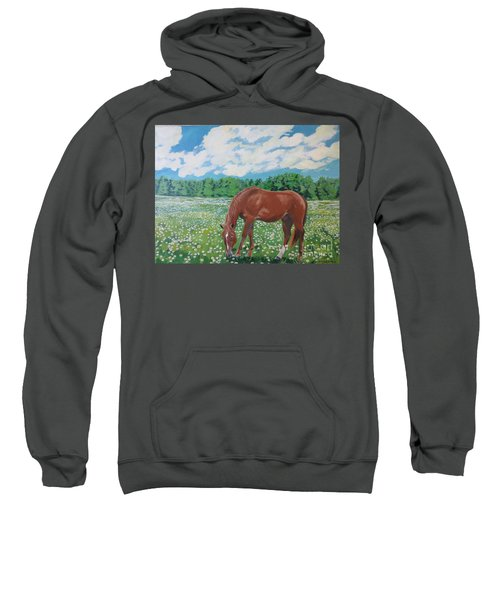 A Horse Named Dante Sweatshirt