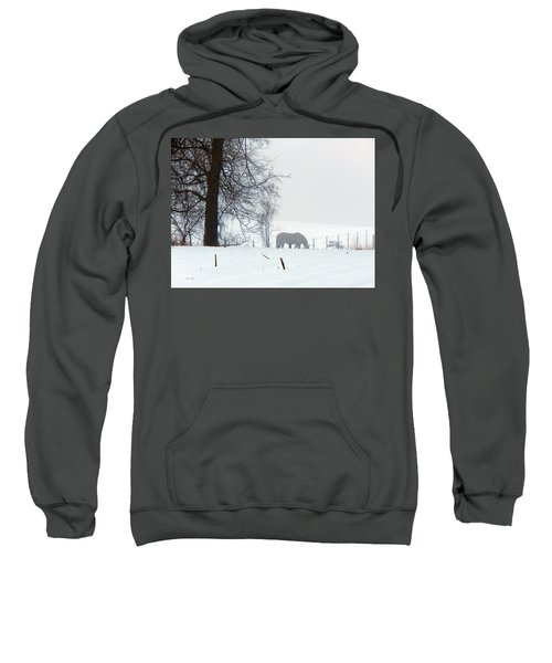 A Horse Of A Different Color Sweatshirt
