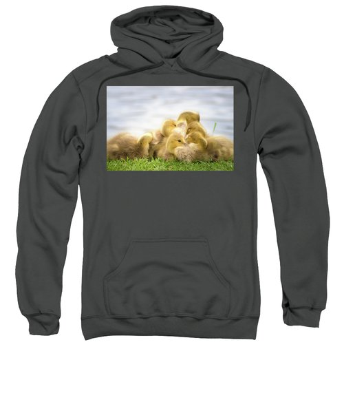 A Pile Of Goslings Sweatshirt