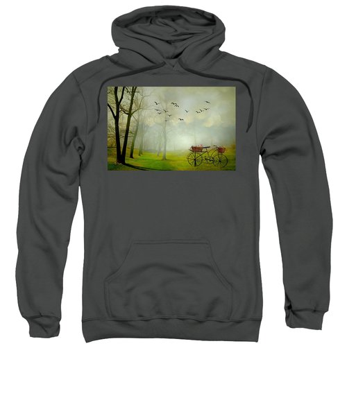 A Ride In The Park Sweatshirt