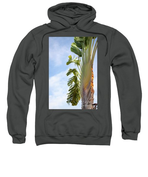 A Slice Of Nature Sweatshirt