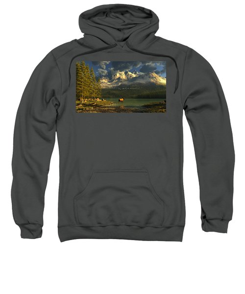A Small Planet Sweatshirt