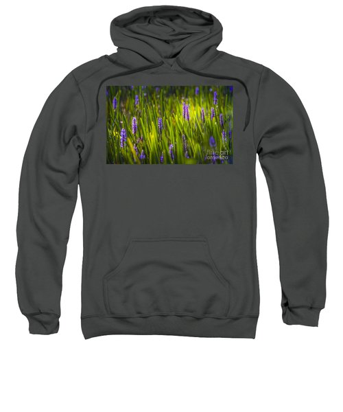 A Splash Of Sunshine Sweatshirt