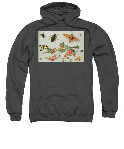 A Sprig Of Redcurrants With An Elephant Hawk Moth, A Magpie Moth And Other Insects, 1657 Sweatshirt