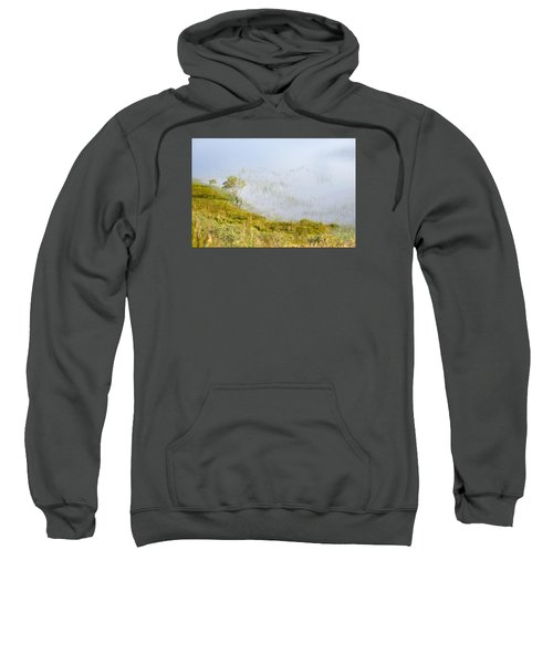 Sweatshirt featuring the photograph A Tree In The Lake Of The Scottish Highland by Dubi Roman