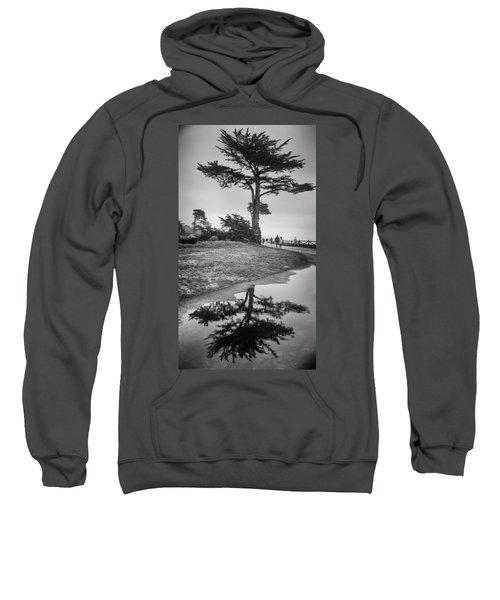 A Tree Stands Tall Sweatshirt