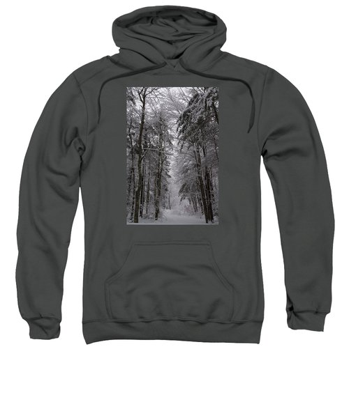 A Winters Path Sweatshirt