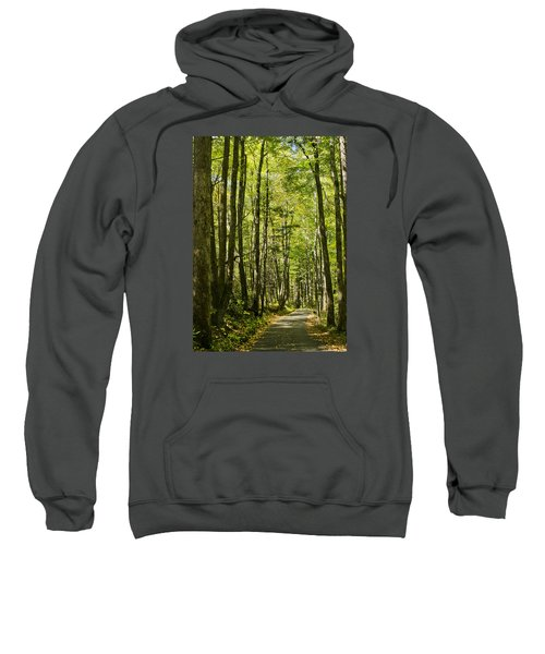 A Woodsy Trail Sweatshirt