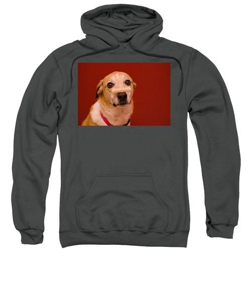 Abbie And A Bone Sweatshirt