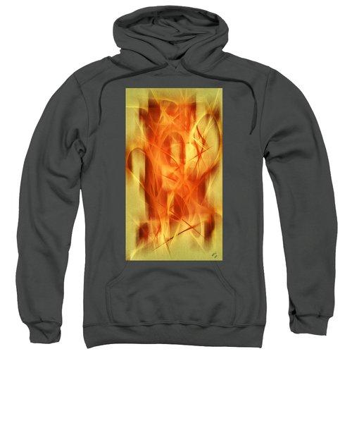 Abstract 293  Sweatshirt