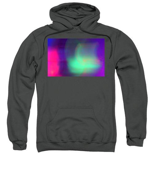 Abstract No. 1 Sweatshirt