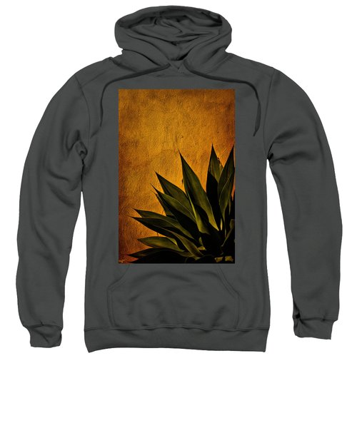 Adobe And Agave At Sundown Sweatshirt