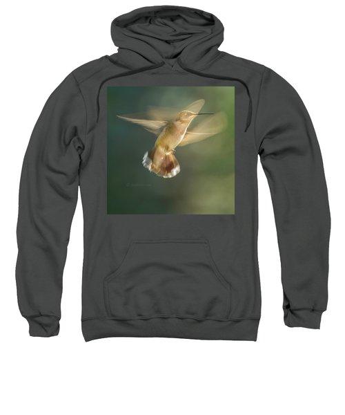Aerial Dancing.... Sweatshirt