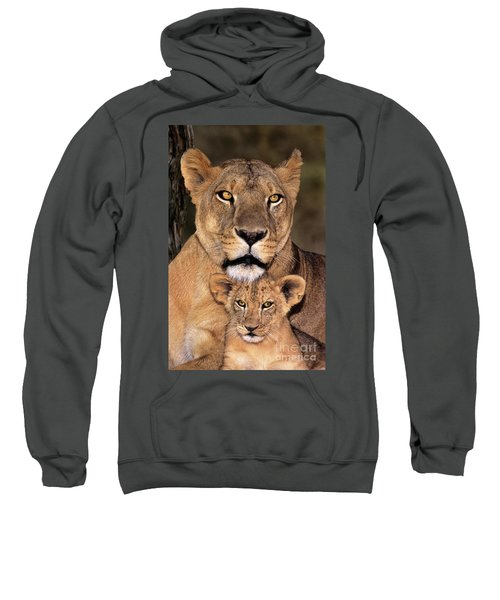 African Lions Parenthood Wildlife Rescue Sweatshirt