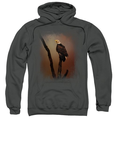 After The Autumn Storm Sweatshirt by Jai Johnson