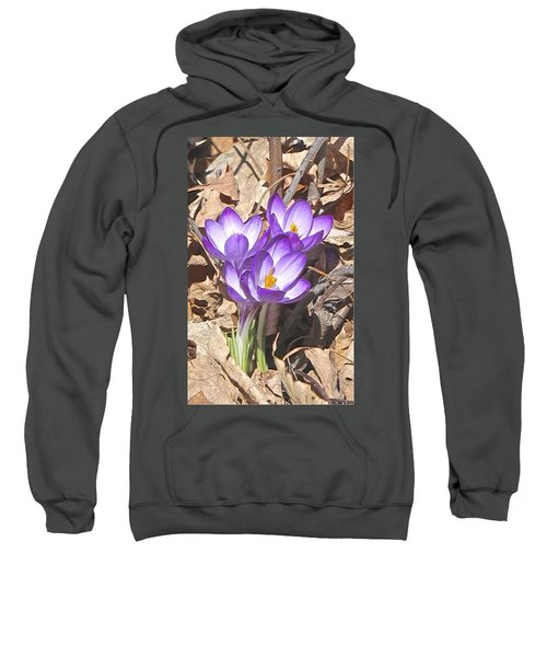 After The Snow Has Gone Sweatshirt